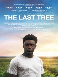 Affiche de The Last Tree